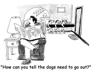 How-Can-You-Tell-The-Dogs-N